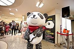 名古屋対決を制したよざくらパンダ。言動はとげとげしいが、意外と寂しがり屋さんだとか