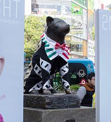 渋谷ハチ公像の衣装デザイン学生から募集 10月シブフェスで着用