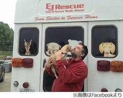 捨てチワワを需要ある隣国へ、1年間で約1,900頭の犬を殺処分から救う。