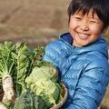 野菜のこだわり方 「新鮮」だけじゃなく「安心・安全」も