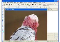 画面4 アイコンをダブルクリックすると、インストールした画像加工ソフトで開かれる
