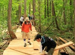 ティンバーランド、フジロックの森でボランティア体験ツアー開催