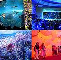 新江ノ島水族館に幻想的なデジタルアート空間 チームラボがプロデュース