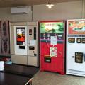 群馬県伊勢崎市に「自販機食堂」オープン 売り切れ続出で好調