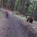 山の中でクマと遭遇した大ピンチ動画 自転車に搭載したカメラが撮影