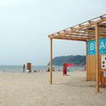 飲酒も音楽もタトゥーもだめ…「日本一厳しいビーチ」逗子海水浴場の現状