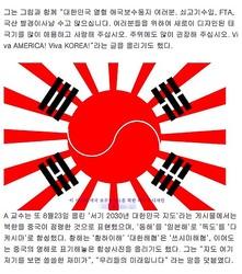 韓国美大教授による「新しい国旗」がネット上で物議に 旭日旗を太極旗をミックス