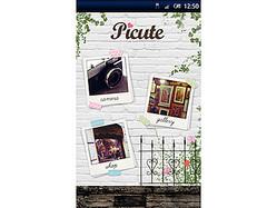 Picute(ピキュート)