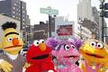 「セサミストリート」ひさびさの映画化です!  - John Lamparski / WireImage / Getty Images