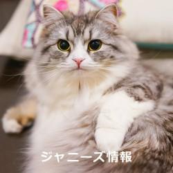 嵐・二宮和也を困惑させたドラマ「HOPE」内の「大野・岡田問題」とは?