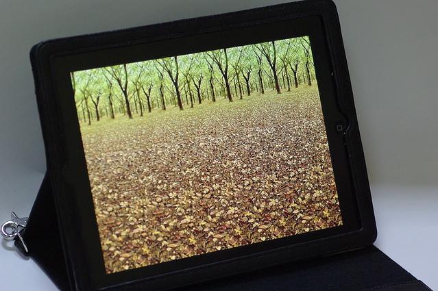 メガネ不要!驚きの3Dを実感できる「3D Stereograms HD FREE」【iPadアプリ】
