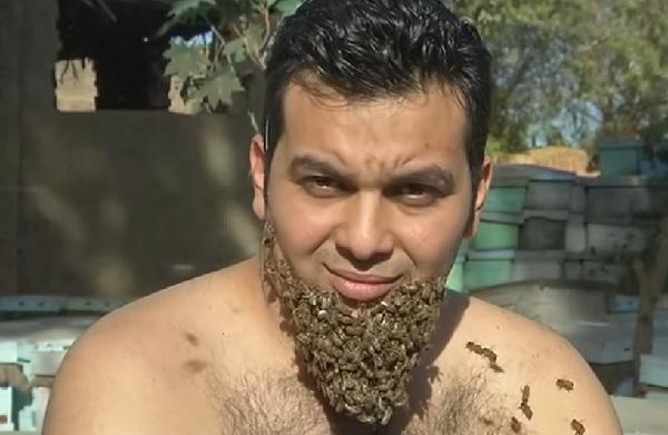 ミツバチの髭」を生やしたエジプト人男性が話題に - ライブドアニュース