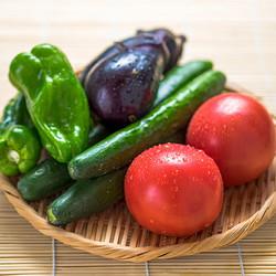 今が旬の夏野菜!新鮮なものを選ぶコツと保存方法を教えて!