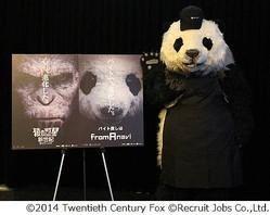 パン田くんが映画館バイト挑戦、公開中の「猿の惑星」応援企画で。