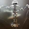 コウモリ型自立飛行ロボットが開発 飛行スタイルを模倣し急降下も可能