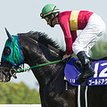 宝塚記念でキタサンに勝てる馬? 最も魅力を感じるゴールドアクター