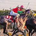 関係者に成り済まして藤田菜七子騎手に近付き、勝利した時に身に着けていたゼッケンにサインを書かせて持ち出したとされる51歳の男が母親に付き添われ出頭した(写真はイメージ)
