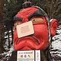 雪の重さで「天狗の鼻」が折れる…補修中に絆創膏を貼ったら海外で大ウケ