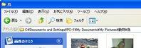 画面1「C:\Documents and Settings\PC-1\My Documents\My Pictures\鳥」の部分が、ファイルのパスとなる