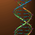 DNA検査の結果基準はバラバラ?