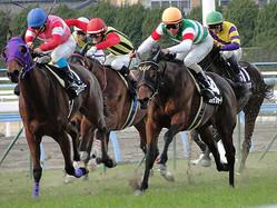 今年も様々なドラマを生んだ競馬界の ラストはいかに…。 ※写真は本文と関係ありません