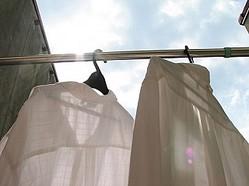 一番驚いた洗濯の豆知識ベスト5「2位:黒いTシャツをビールで洗う」「3位:バナナの皮で革ソファ」