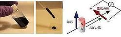 東北大、導電性プラスチック中でスピン流が電気信号に変換されることを発見