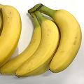 バナナの価格を決める要因 実は標高の差だったと判明