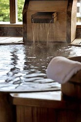 日本三大美肌の湯と呼ばれる、嬉野温泉