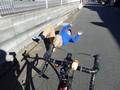 当たってからでは遅い!急増する自転車当たり屋にそもそも当てられないようにする方法