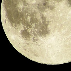 """月のリズムも取り入れてスッキリ!おすすめ""""毒出し生活""""教えます"""