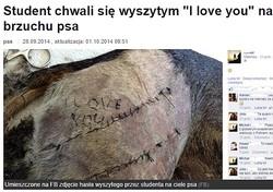 獣医の卵により文字をステッチされた犬(画像はolsztyn.gazeta.plのスクリーンショット)