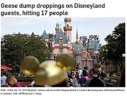 アナハイムのディズニーランドで17名が糞の被害に(画像は『CTV News 2017年6月10日付 「Geese dump droppings on Disneyland guests, hitting 17 people」(AP Photo/Jae C. Hong)』のスクリーンショット)
