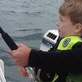 子供向け釣り竿に巨大サメがひっかかる(出典:http://www.foxnews.com)