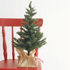 彼にあげるクリスマスプレゼントの選び方