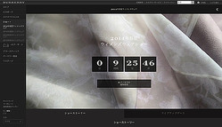 【生中継】バーバリー、KTZがライブ配信 2014年春夏ロンドンウィメンズ4日目