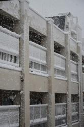 雪は降る、管理人は来ない
