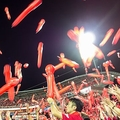 野球 広島 観客席 フリー素材