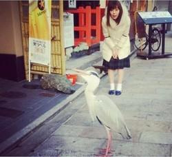 鳥とみるきー(出典:https://www.instagram.com/miyukichan919)