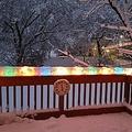クリスマスライトの上に雪が積もったら01