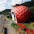 巨大なフルーツが次々に出現 長崎県にあるファンタジックな道路