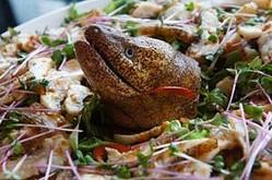 『珍怪魚を食べてみよう』が緊急企画!築地が本気で集める「珍怪魚」VSミシュラン星獲得の一流シェフ