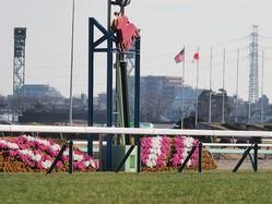 中山競馬場の馬場情報