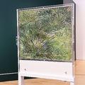 箱根のポーラ美術館に展示されるゴッホの「草むら」裏面も公開