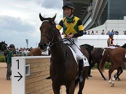 土曜中山5R新馬は6番人気の伏兵エバービクトリアスが逃げ切る