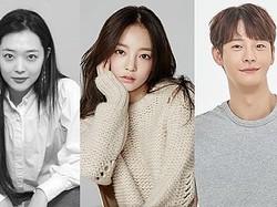"""本当に消えてしまった韓国の若きスターたち…""""悲痛な1年""""で終わらせないために"""