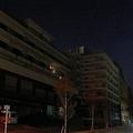 別府市中心部の海沿いにある北浜温泉旅館街。海沿いに居並ぶ大型リゾートホテルたちは2月時点で殆どが休業したままだった。犬の散歩に来たものの、あまりの暗さに早足で通り過ぎる地元民の姿もあった。