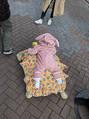 高橋真麻が亀の甲羅に乗る娘をブログで公開「最高の写真」と話題