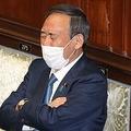 菅義偉首相が20年通うマッサージを体験 思わず「あ〜、極楽…」