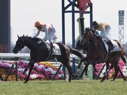 【中山6R/新馬戦】ミッキーフォンテンが馬群を割って抜け出す!